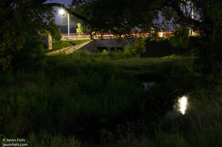 Fireflies in the park
