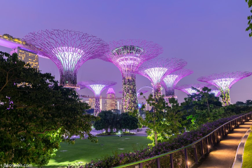 Singapore Super Trees in HDR