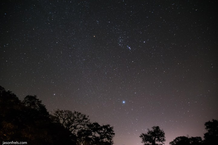 Orion in the night sky near Victoria Texas