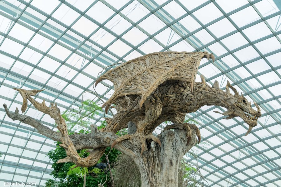 Singapore Flower Dome Dragon