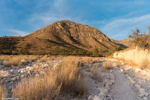 Guadalupe Mountains National Park trail