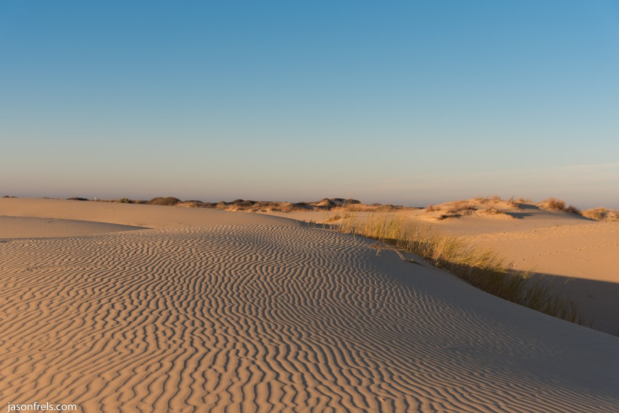 monahans-sandhills-morning-5