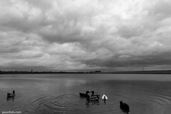 Devine Lake park in Leander on a gloomy day on a gloomy day