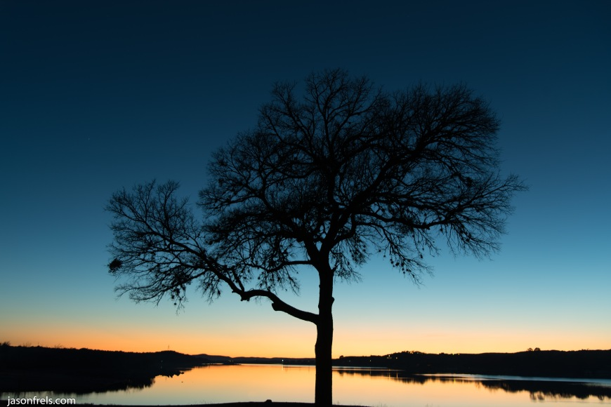 Silhouette of a tree at twilight at Inks Lake Texas