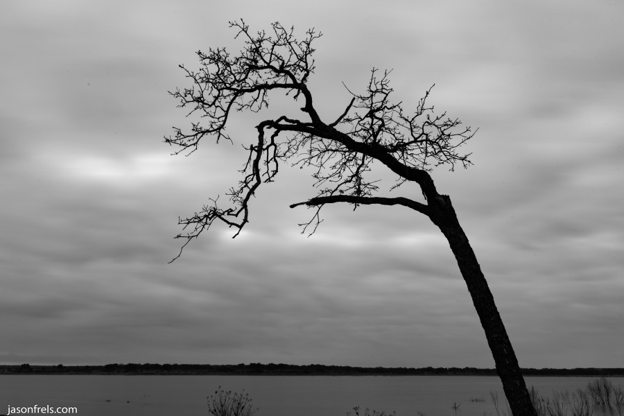 Tree-Lake-Brownwood