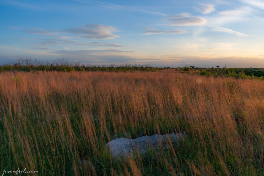 Long exposure grass in wind Balcones Canyonlands NWR at sunset
