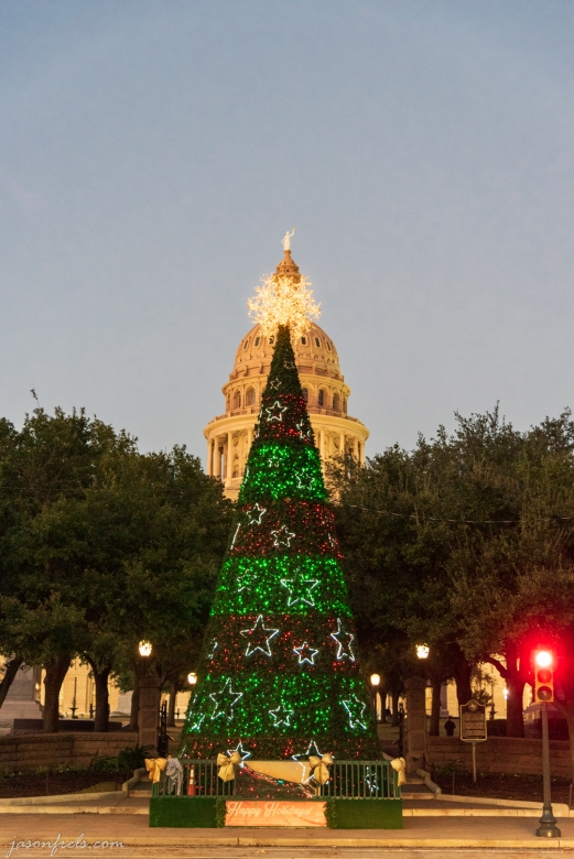 Capitol Building Christmas Tree in Austin Texas