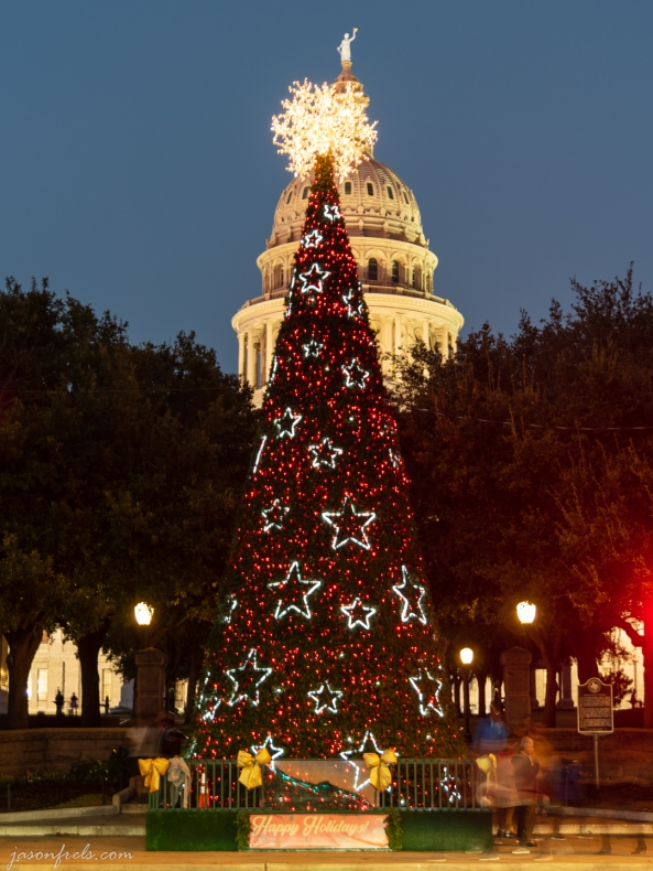 Texas Capitol Christmas Tree in Austin