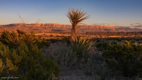 Sierra Maderas del Carmen from Big Bend National Park