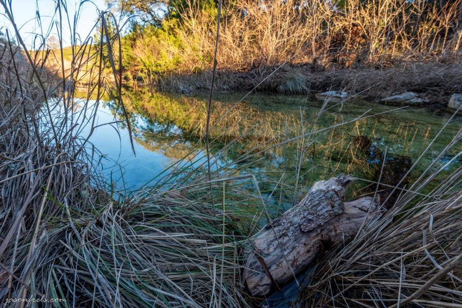 Stream at Balcones Canyonland National Wildlife Refuge
