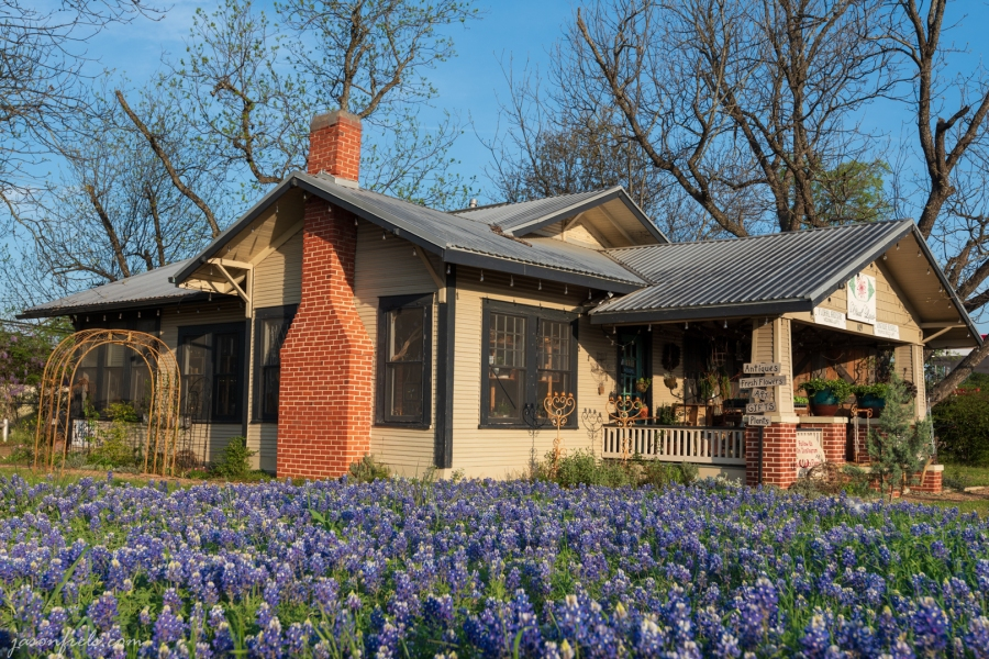 Bluebonnets and Antique Shop in Leander Texas