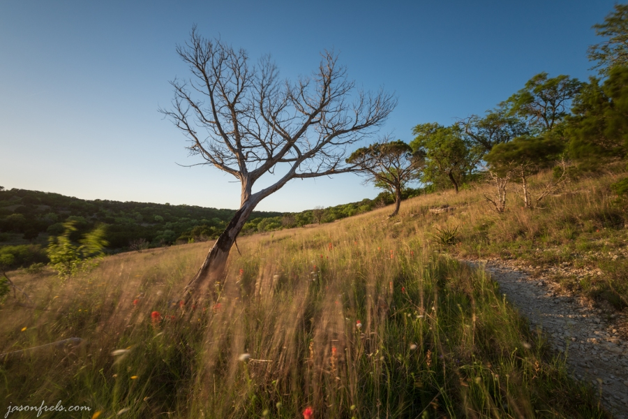 Long exposure in Balcones Canyonlands National Wildlife Refuge