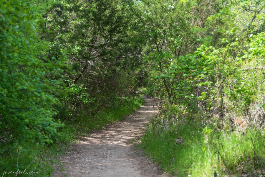 River Trail at Colorado Bend State Park