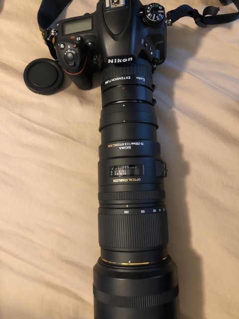 Nikon D750 with Extension Tubes and Sigma 70-200mm, f/2.8 Lens
