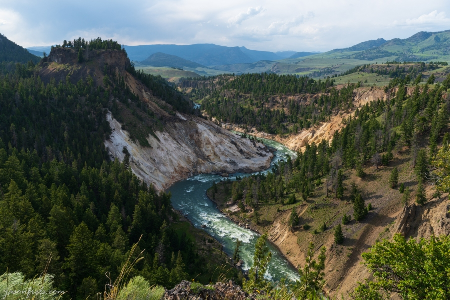 Canyon near Tower Falls - Yellowstone National Park