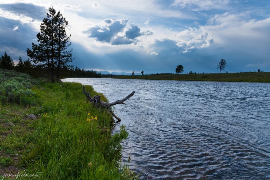 Madison River - Yellowstone National Park