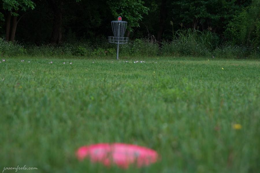 Disc-Golf-Far-Focus