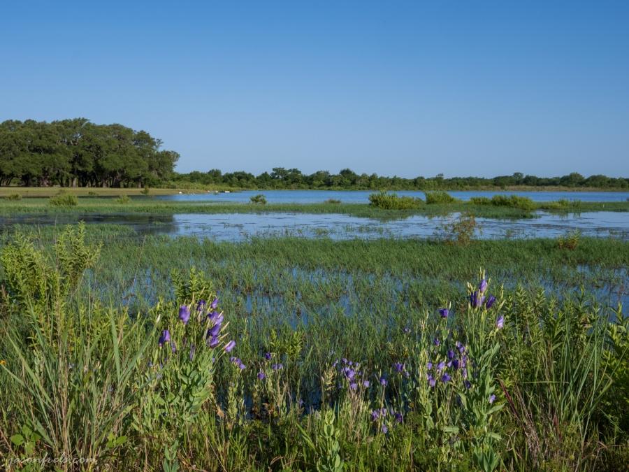 Devine Lake Park in Leander Texas