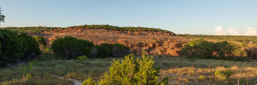 Burned Hill Side at Balcones Canyonlands
