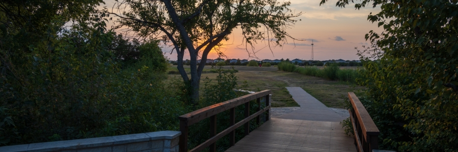 Footbridge at the Park