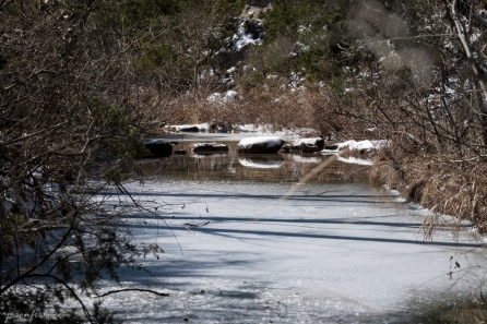 Balcones-Canyonlands-National-Wildlife-Refuge-stepping-stones-frozen-1